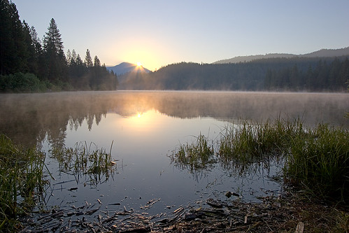 sun lake water sunrise shore sequoia humelake