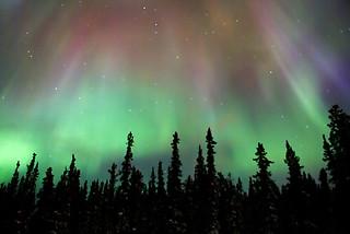 Northern lights in Whitehorse, Yukon, Canada | by Studiolit