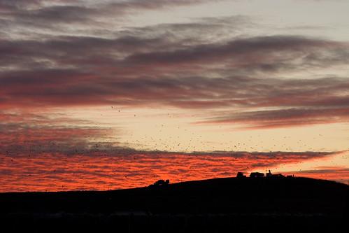 20d silhouette clouds trash sunrise canon eos 2006 canoneos20d landfill 10028 kevinvertucio kevinv033™ ef100mmf28macro
