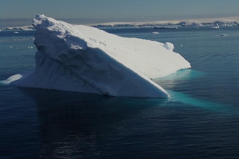 Antartica 2006 068