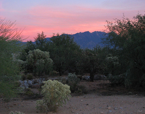 sunset arizona usa landscape desert az greenvalley sonoran