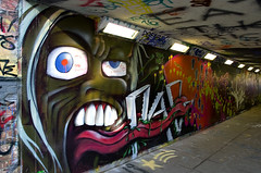 Underpass graffiti_3 | by Colin 30d