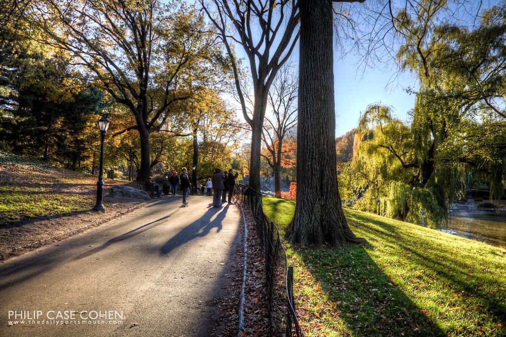 Central Park by Philip Case Cohen