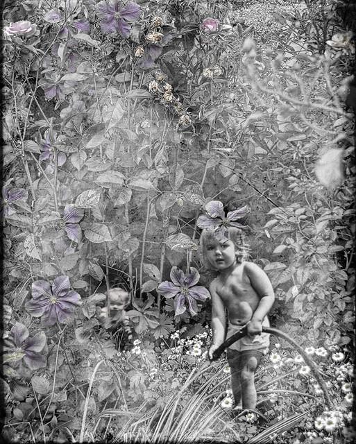 A Childhood Garden?