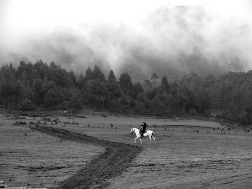 Cabalgando entre las nubes