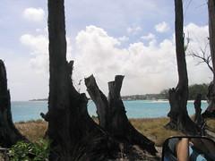 201 - Cottonhouse Bay