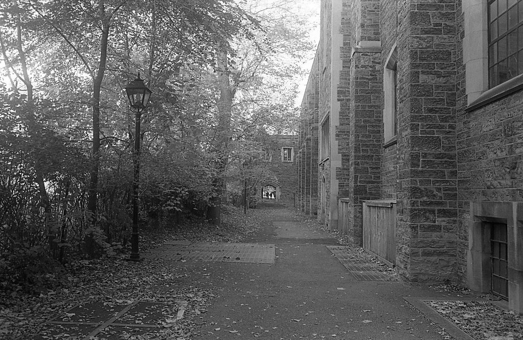 Behind Hart House
