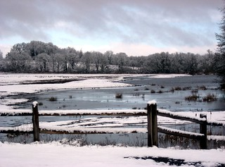 Marsh Area with Snow, Finley Wildlife Refuge, Near My Home