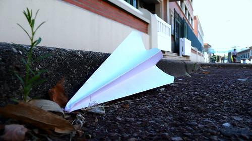 Plane Crash | by PommeGranny
