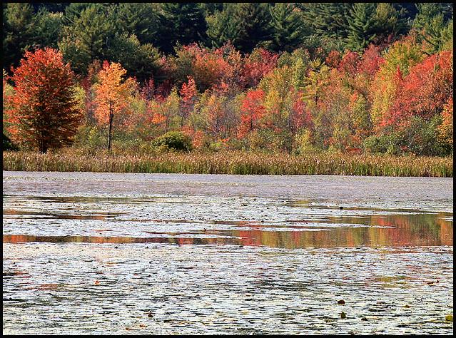 Fitzgerald Lake