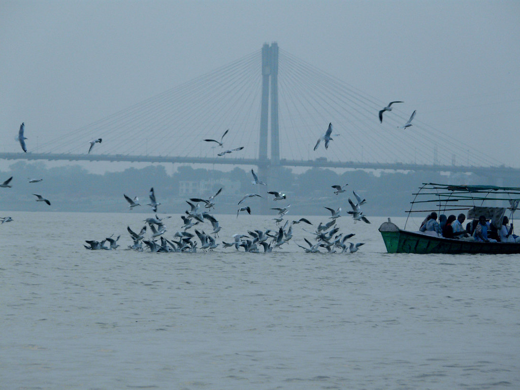 Picture of sangam allahabad