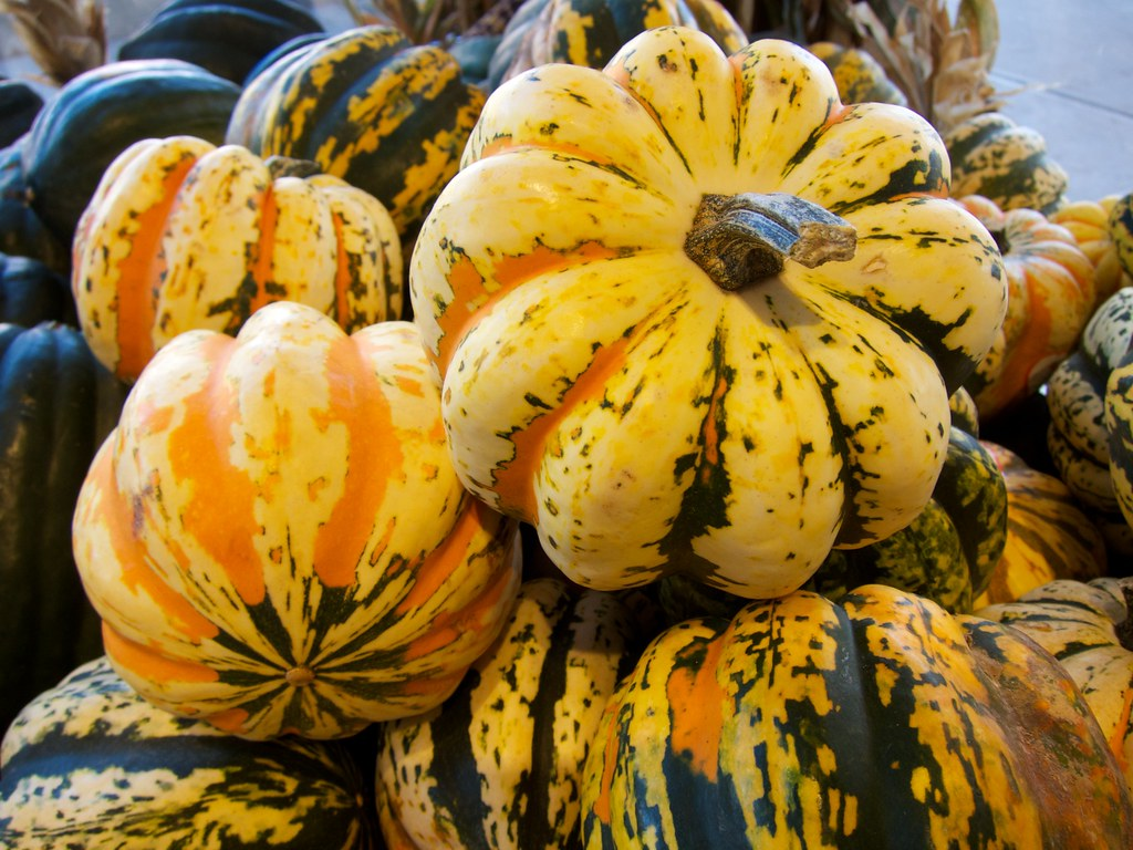 "Carnival Squashes 嘉年華南瓜 | ""Carnival squash is available Octo… 