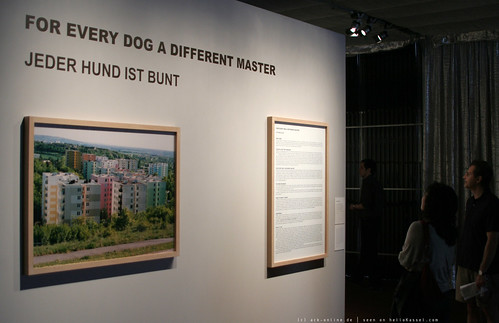 documenta 12 | Katerina Seda / For Every Dog A Different Master | 2007 | by A-C-K