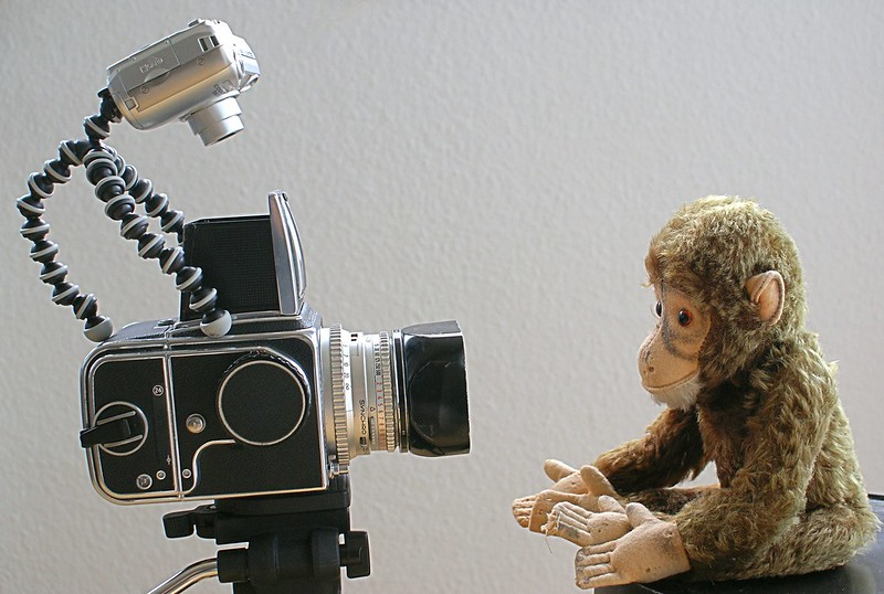 Photo shooting with Mr. Ape