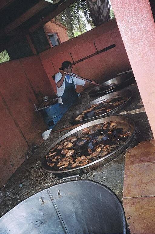 Carnitas, Birria, Fish in Baja, MX