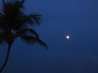 Moon Over Punta Cana