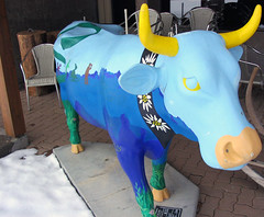 Blue Cow | by Stewsnews