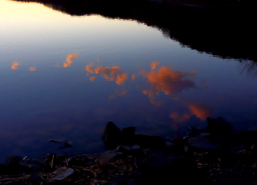 park morning pink blue trees light sunset shadow wild sky orange mountain lake fish black color reflection tree nature water clouds contrast forest dark landscape fishing woods rocks sundown pennsylvania pa newport sillouette redneck perry dryflydrifting