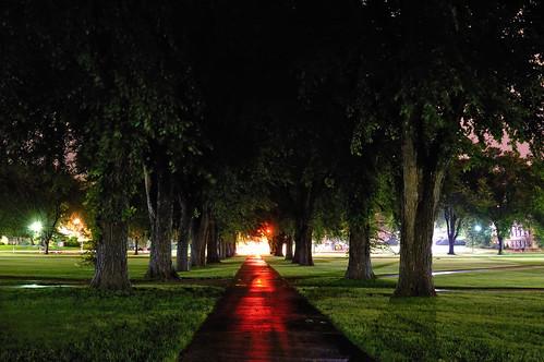 longexposure trees storm night reflections dark landscape lights nightscape nocturnal tunnel soe nocturne oval csu 2007 longtimeexposure notmanipulated blueribbonwinner mywinners aplusphoto flickrdiamond onlythebestare excapture