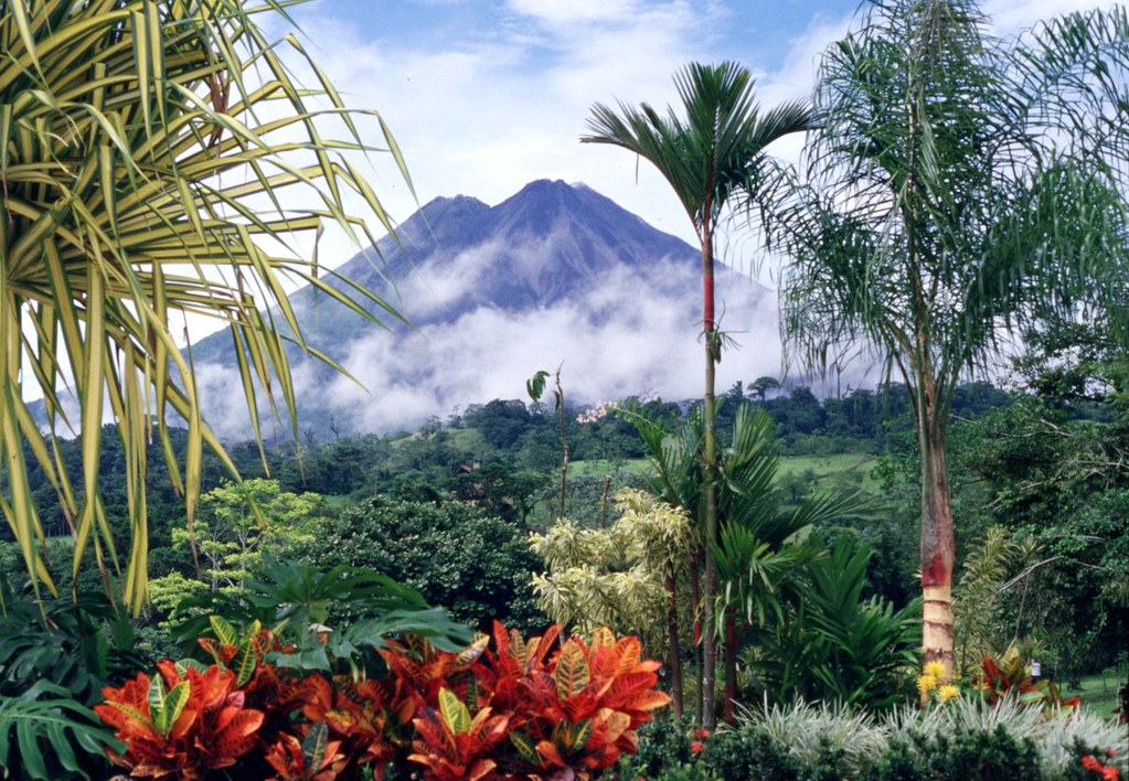 Costa Rica... No artificial ingredients!
