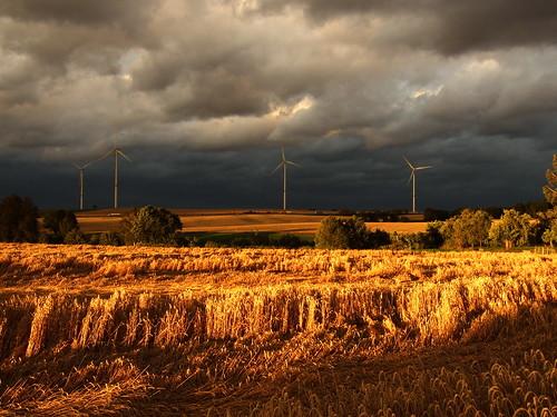 sunset storm nature windmill field clouds corn sonnenuntergang feld wolken sturm getreide windmühlen