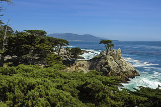 Lone Cypress Scenic, Monterey, CA 2005 | by Lone Cypress