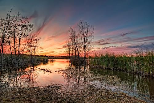 sunset nature landscape nikon bravo colorado glow fortcollins co openspace hdr 2010 naturalarea clff d700 runningdear