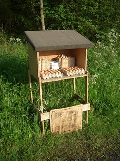 free range eggs for sale