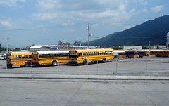 School Buses | by GoGap