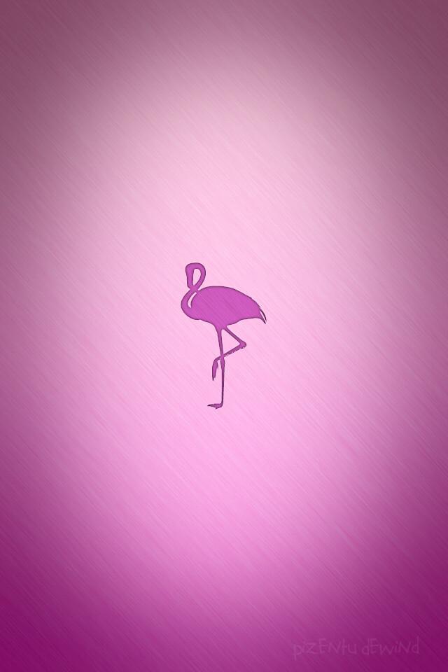 Pink Flamingo Iphone Wall A Pink Flamingo Wallpaper I Made Flickr