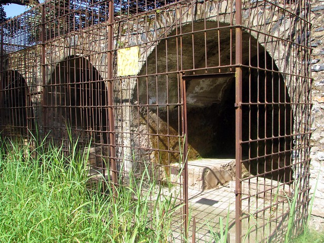 Lion cages