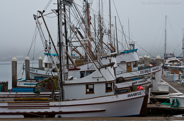 Bodega Bay Fishing Trawlers