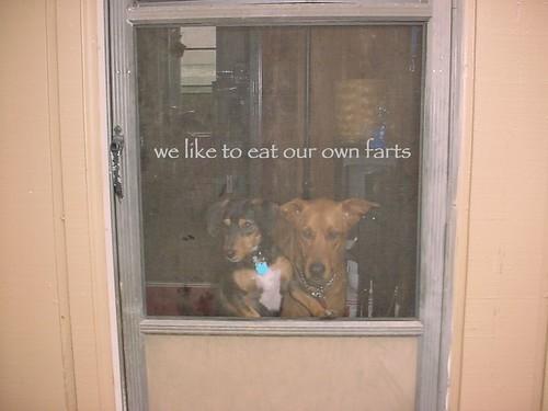Free dogfarts