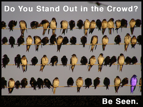 Do You Stand Out? | by FindYourSearch