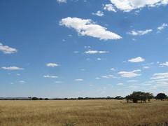 What Zimbabwe looks like   by GrahamKing