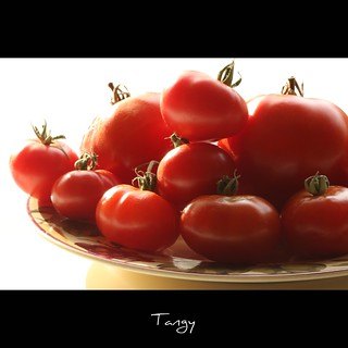 Tangy | by John-Morgan