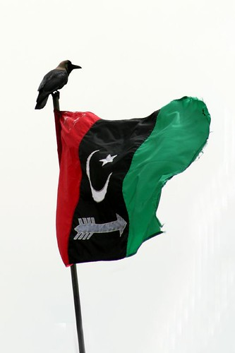 Crow on PPP flag | by Zee Chaudhry