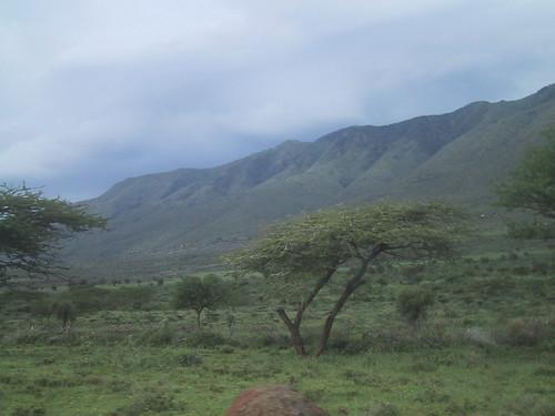 africa church kenya kirche afrika lutheran kenia evangelical jubilate kirchengemeinde kerudo kinyanjui elck