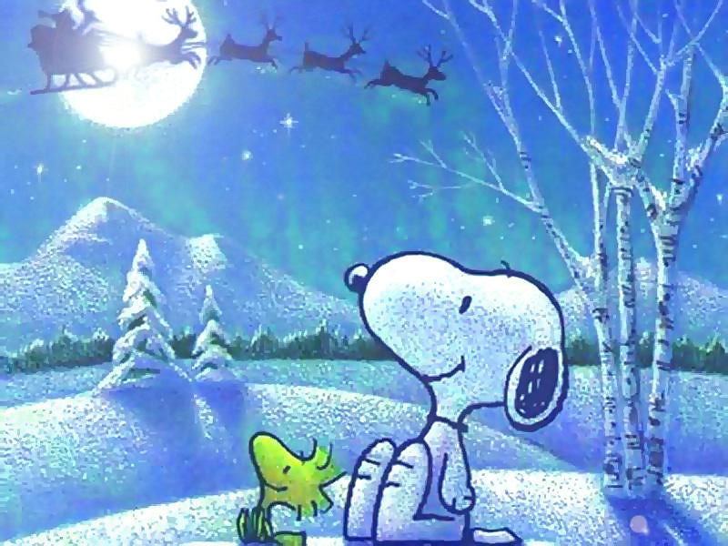 Snoopy Christmas Images.Snoopy Christmas Mark West Flickr