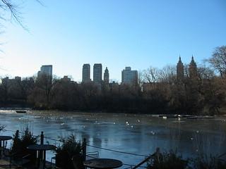 New York, Central Park | by flatazor