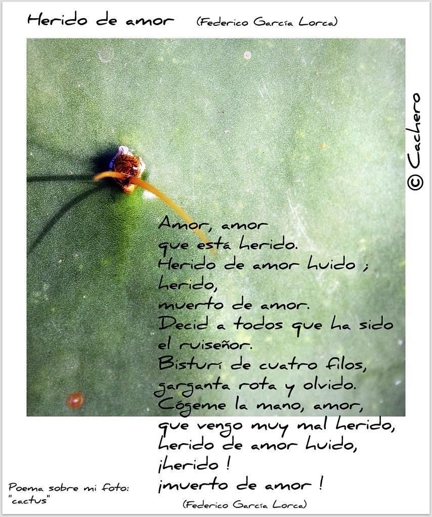 Herido De Amor Federico Garcia Lorca Poema Sobre Mi Foto