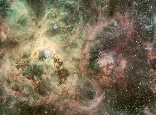 ESO 2.2-m WFI Image of the Tarantula Nebula   by NASA Goddard Photo and Video