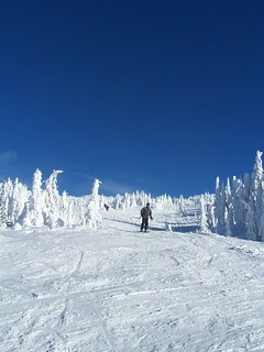 Man Skiing | by Hamedog