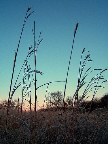 minnesota sunrise rochester assisiheights