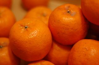 Mandarin Oranges | by sonictk