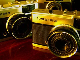 Nossas Olympus Trip | by Julio França