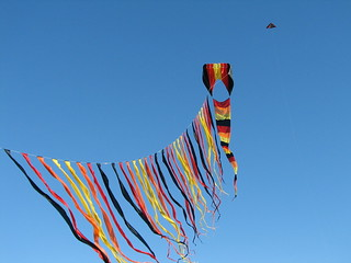 large flowform with line laundry | by youflykites