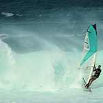 windsurfers in Maui, 11Nov11.9