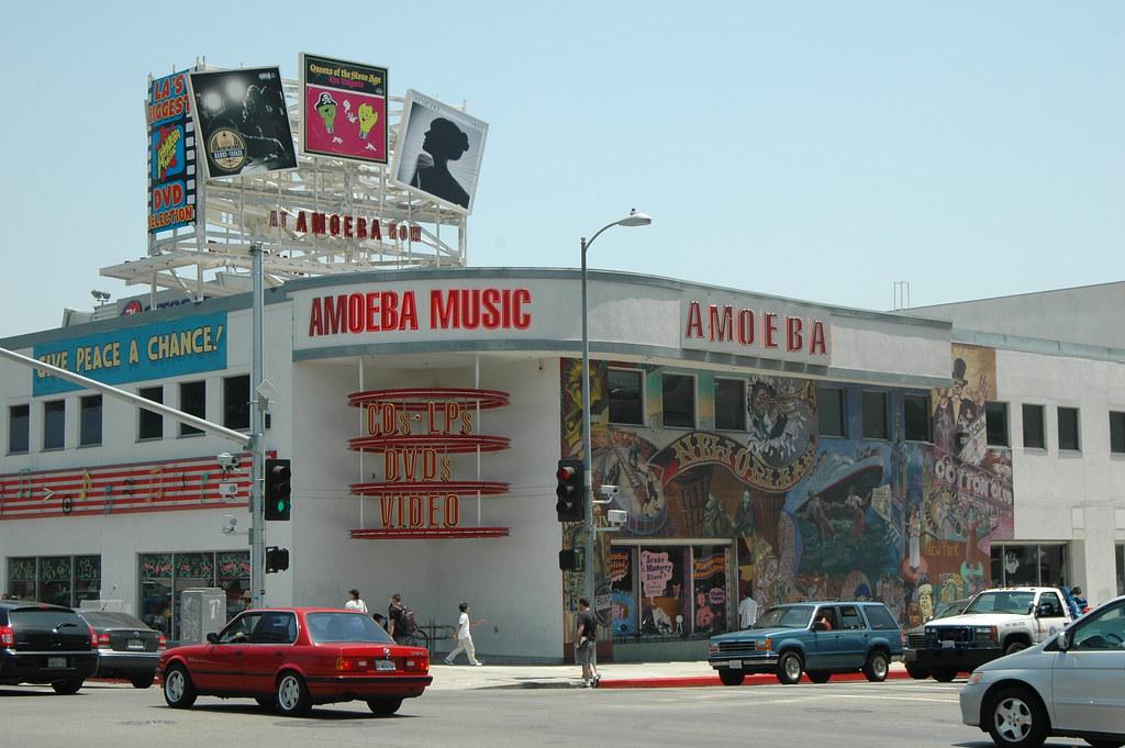 Image result for amoeba music