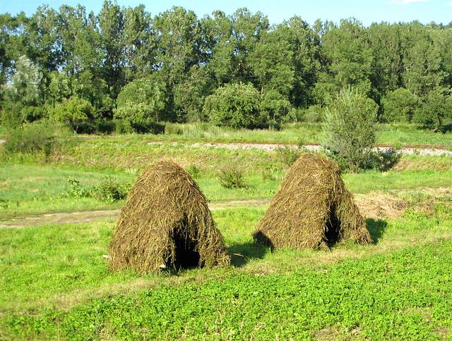 Slovak haystacks
